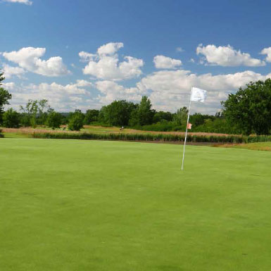 green 14 Golf de Montauban l'Estang